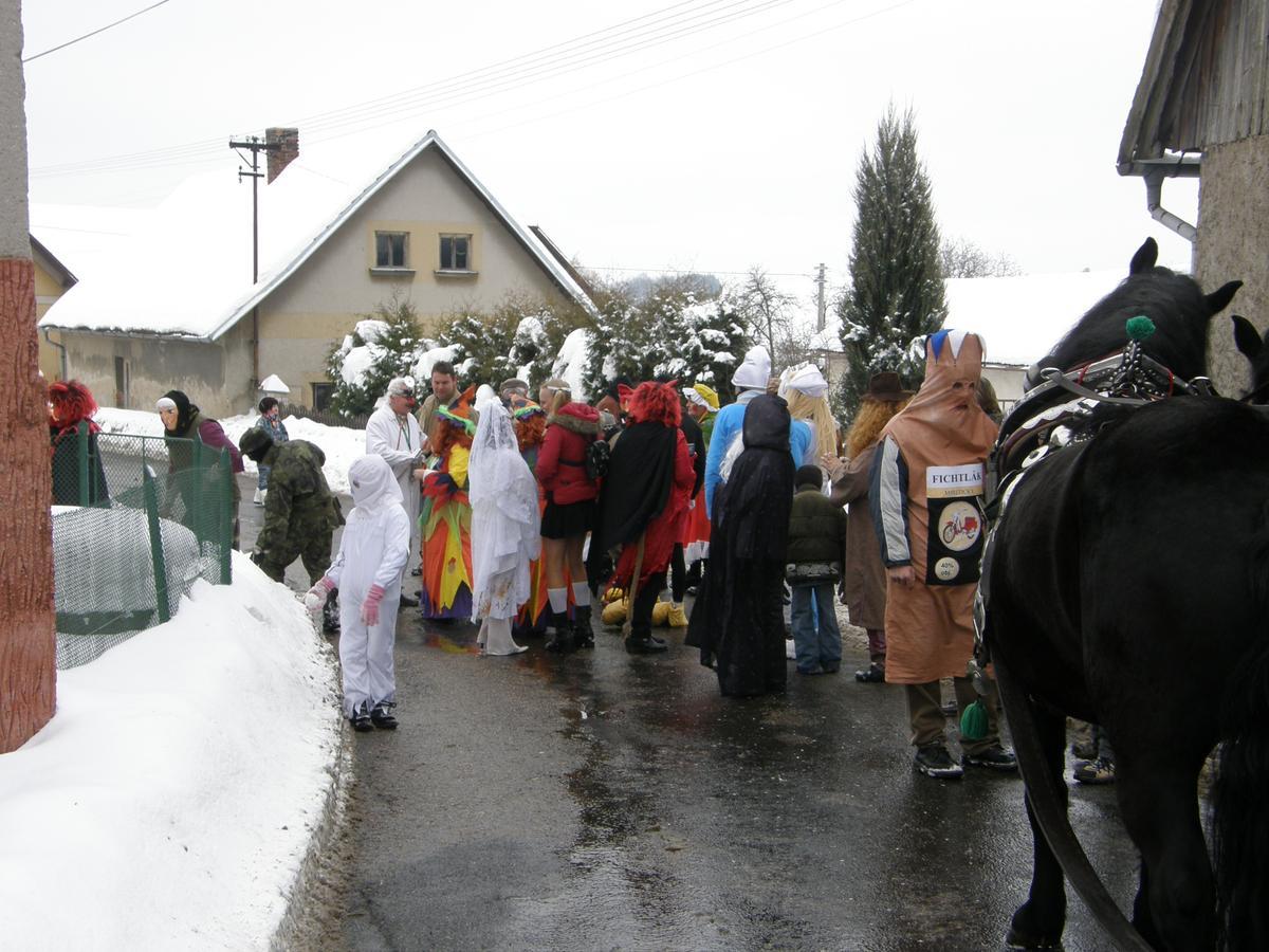 Masopust 2010 II